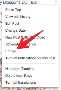 Facebook Embed Video 3