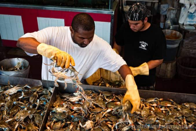 Sorting crabs at the Maine Ave Fish Market