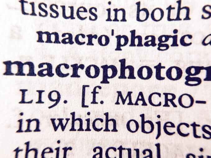 OlloClip Macro Pro Lens Set for iPhone 7 Sample Images