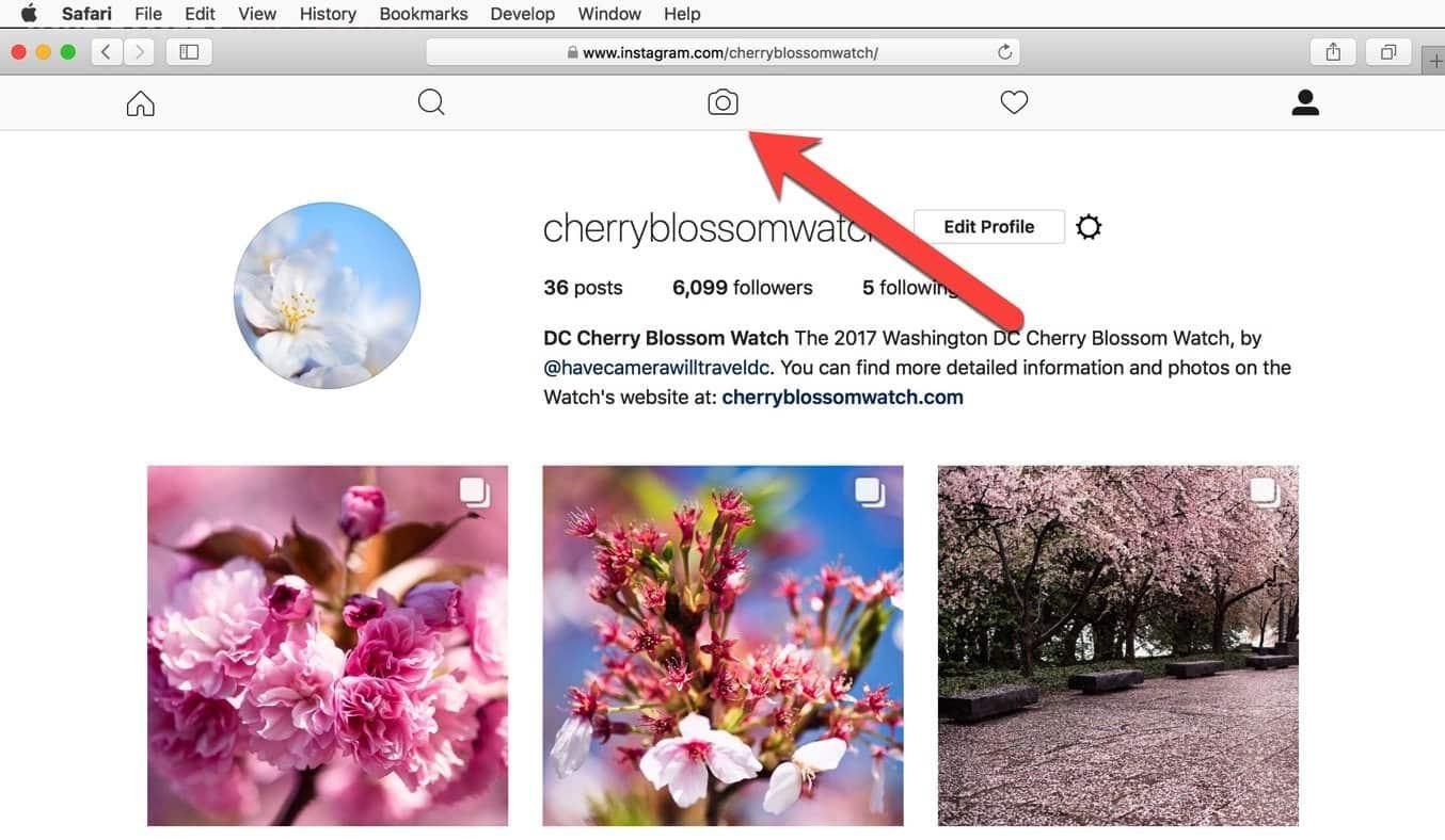 Instagram User Agent Upload Safari