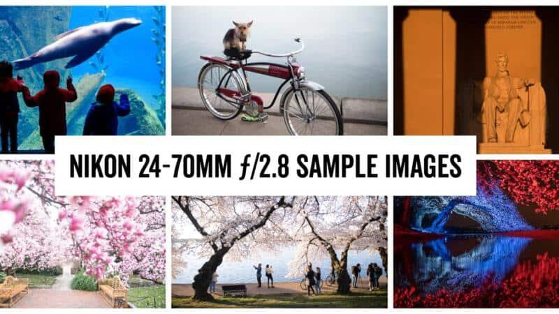 Nikon 24-70mm Sample Images