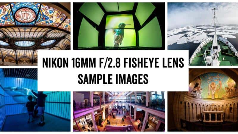 Nikon 16mm f/2.8 Fisheye Lens Sample Images Post Header