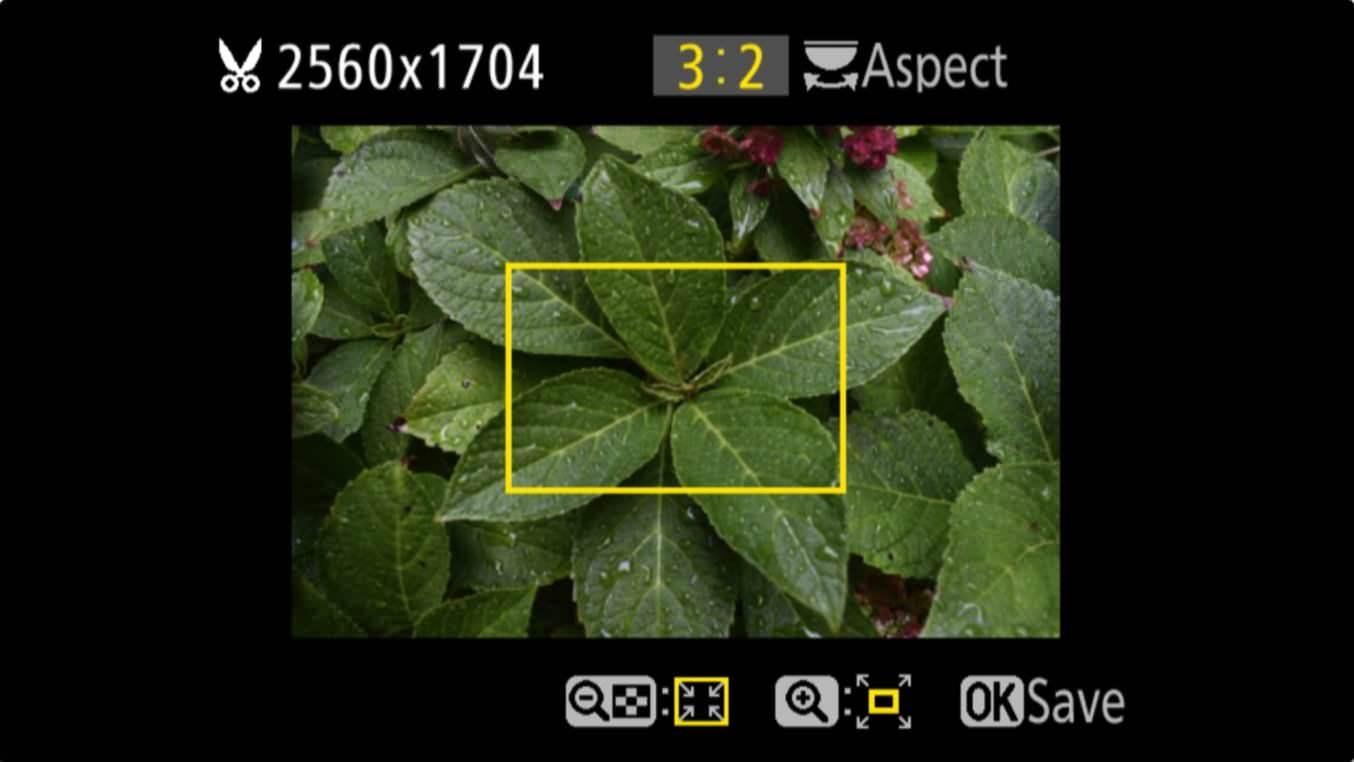 Nikon D3400 Aspect Ratio Trim 3