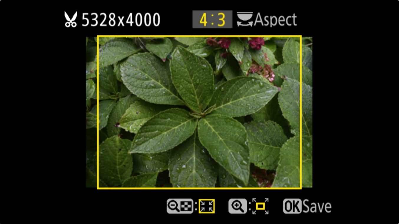 Nikon D3400 Aspect Ratio Trim 4