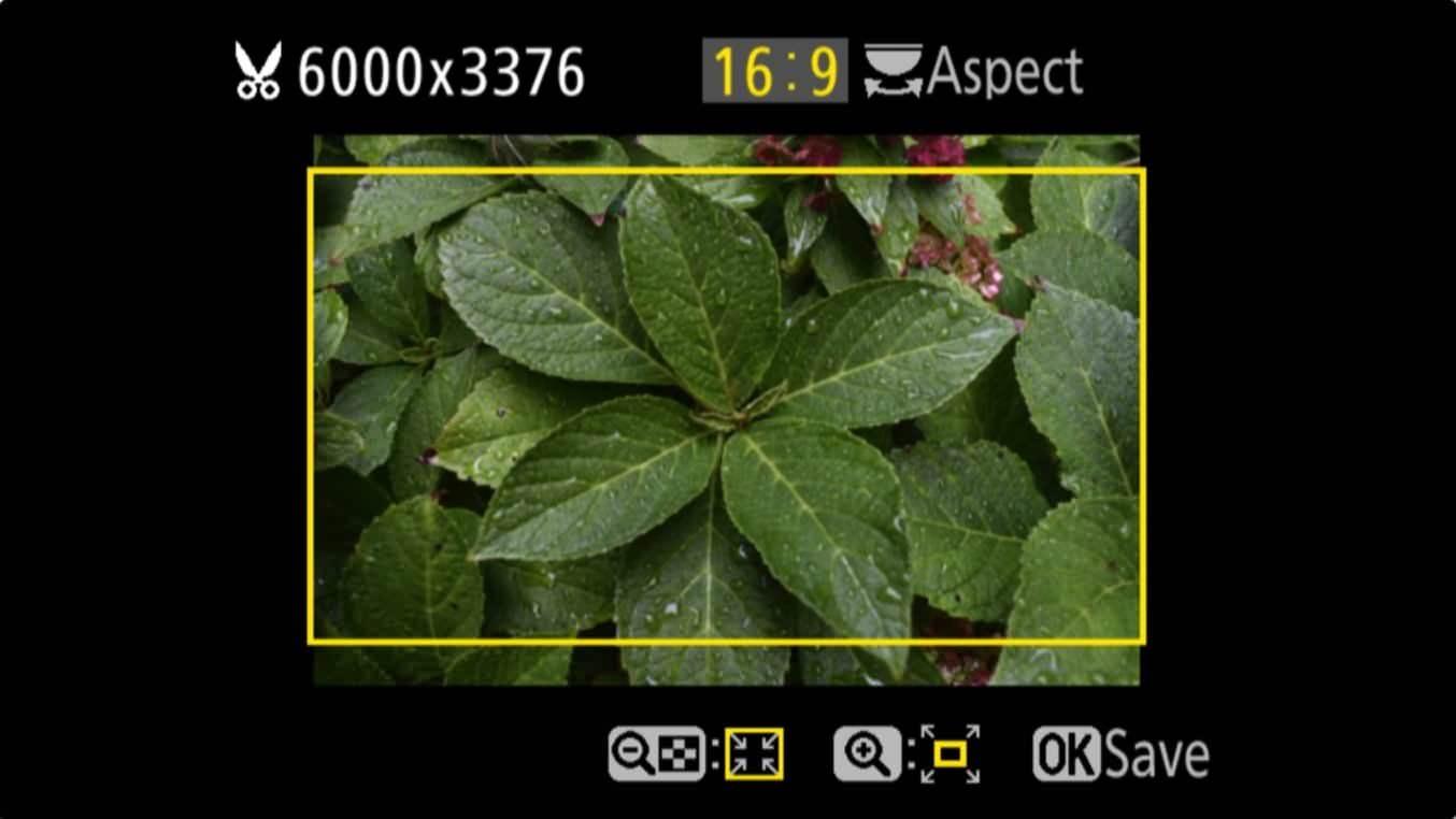 Nikon D3400 Aspect Ratio Trim 7