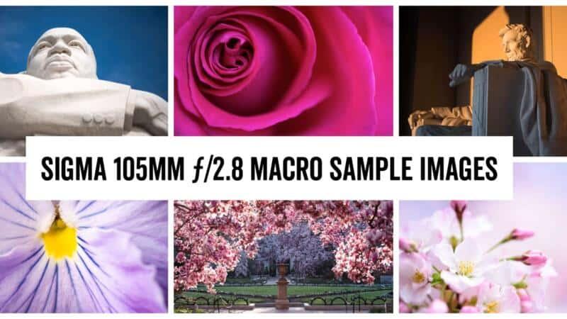 Sigma 105mm ƒ/2.8 Macro Sample Images