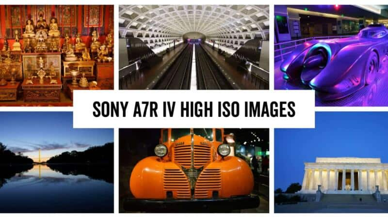 Sony A7R IV High ISO Sample Images Header Image