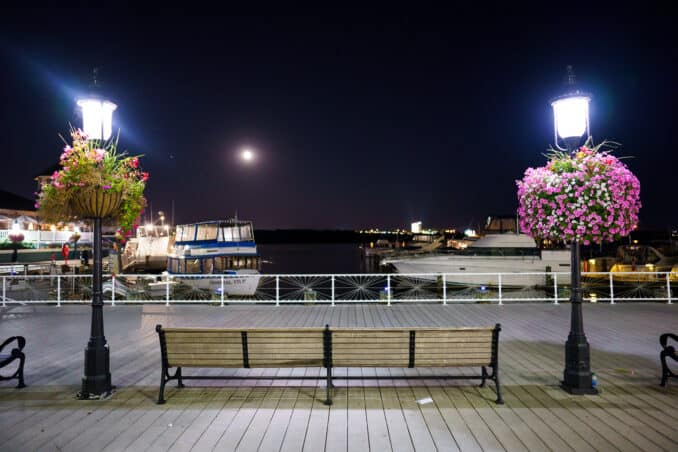 Sony a7R IV High ISO Example Image
