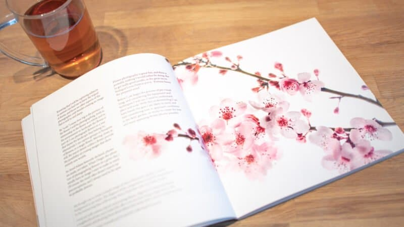 Book Review - Photographing Flowers by Harold Davis