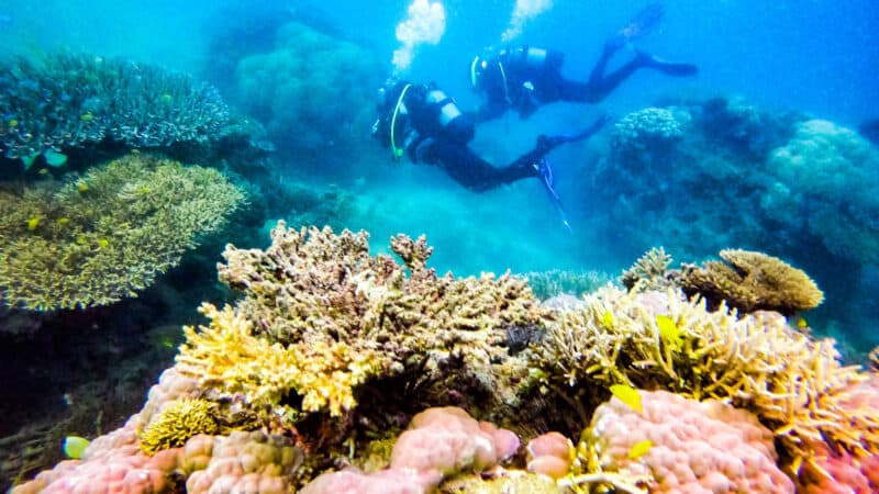 Underwater Photography with a GoPro Camera