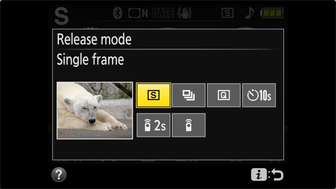 Nikon D3400 Self Timer Release Mode Screen